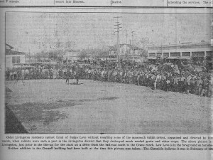 Lewis Love, seated on horse on left, leading a jack rabbit drive, about 1918. Photo from the Livingston Chronicle, Oct. 12, 1933.